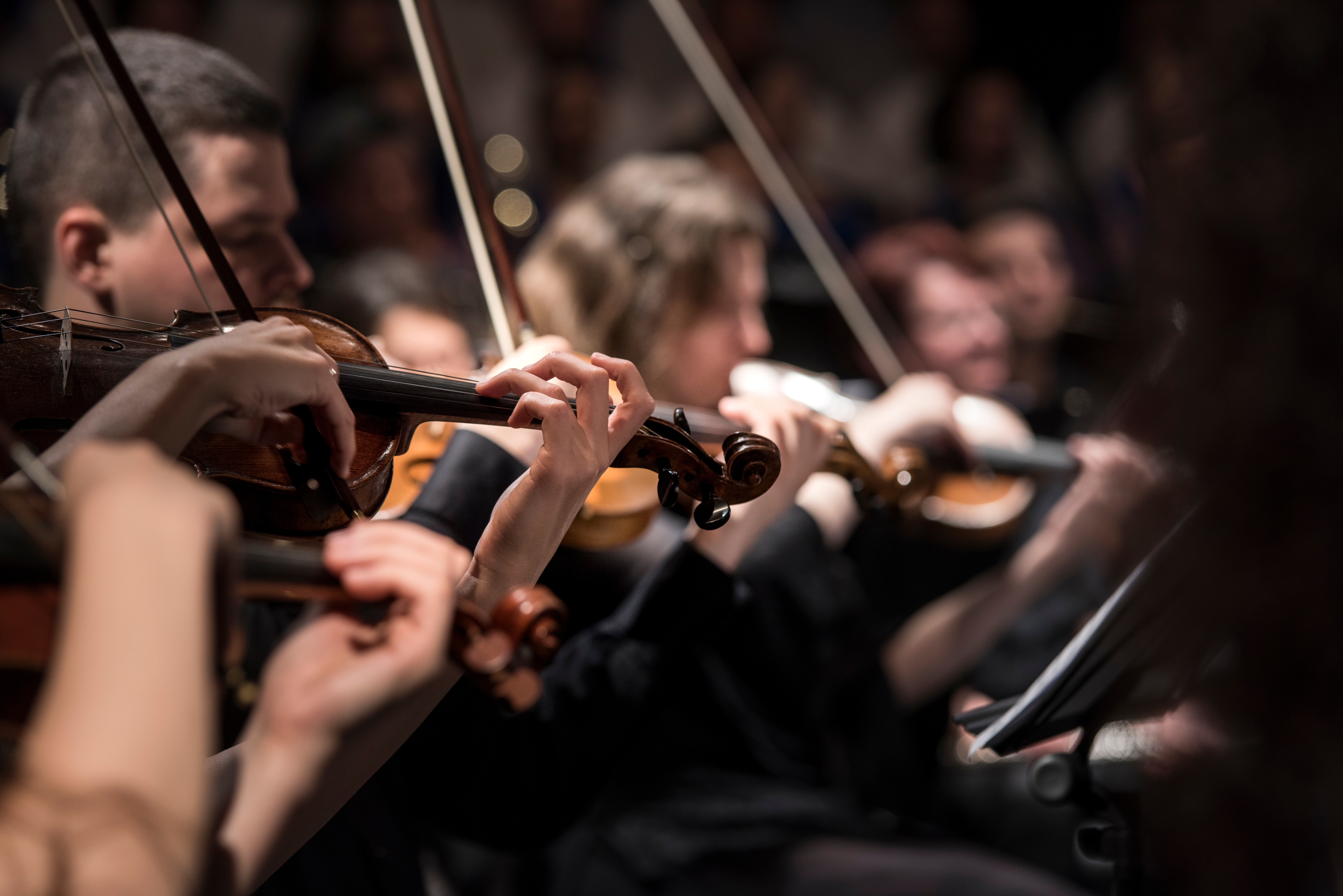 The Phoenix Symphony Orchestra has a full schedule throughout the year.